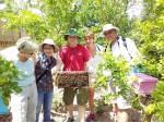 Hoạt động tại Mekong Ecolodge