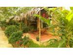 Phòng Mekong Ecolodge